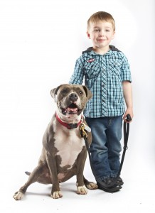 pit bull with male child FINAL