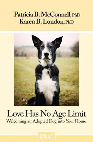 Love Has No Age Limit eBook Version
