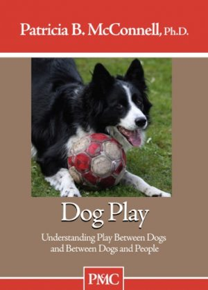 Dog Play DVD