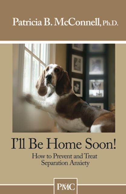 I'll Be Home Soon